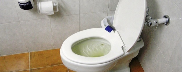 Never flush tampons down the toilet ever terry 39 s - How to go to the bathroom with a tampon in ...