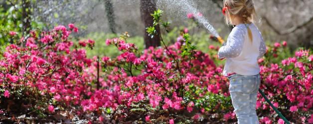 Spring Has Sprung: Prepare Your Outdoor Plumbing