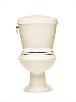 Terry's Plumbing American Standard Toilets