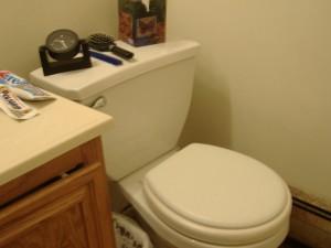 American Toilet