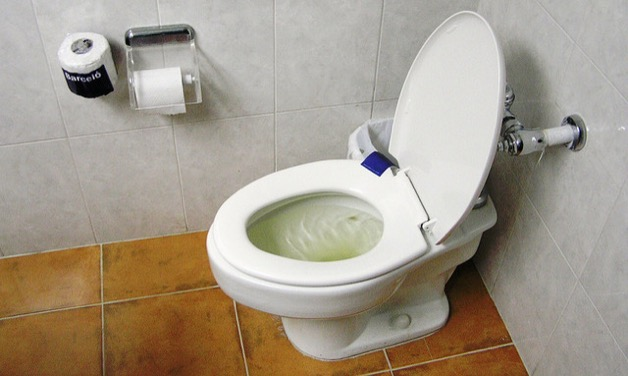 Why You Should Never Flush Tampons Down The Toilet