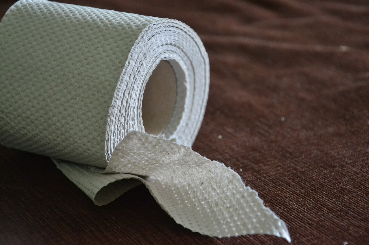 How One Document Solved The Great Toilet Paper Debate