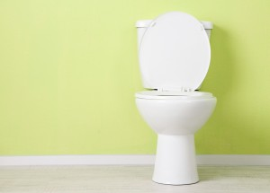 Practical-Toilet-Considerations