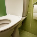How To Warm That Cold Toilet Seat