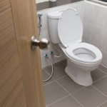 This Toilet Turns Waste Into Power