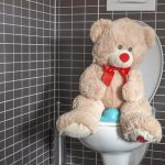 Things You Should Never Flush Down The Toilet