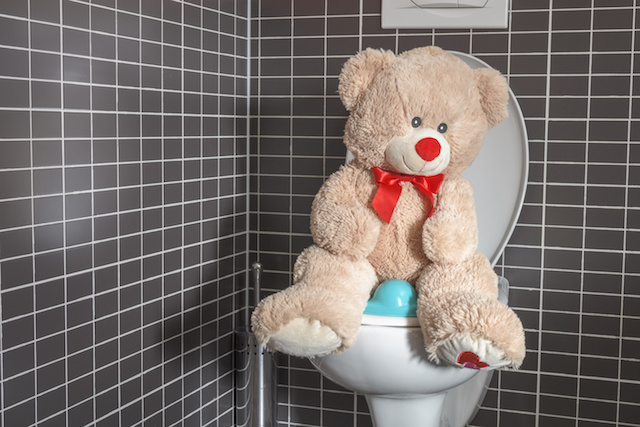 Things You Should Never Flush Down The Toilet Terry S