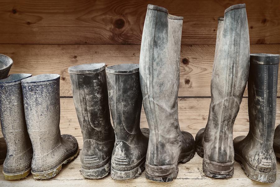 Wash Off Mud | Terry's Plumbing Blog