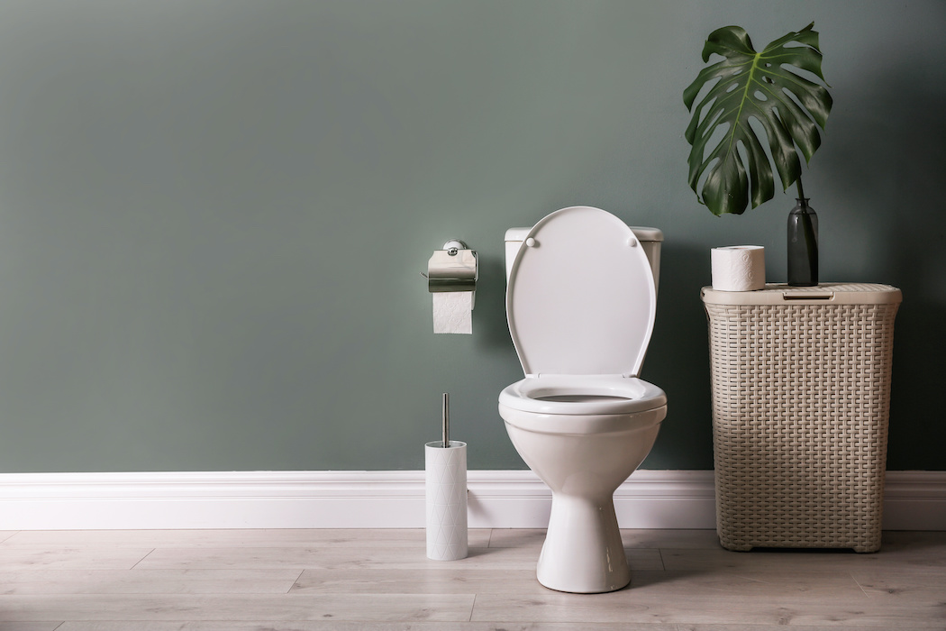 Toilet tablets can harm your plumbing | Terry's Plumbing Pittsburgh