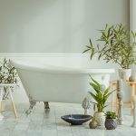 Some of the best plants for bathrooms on display around a clawfoot tub | Terry's Plumbing Pittsburgh