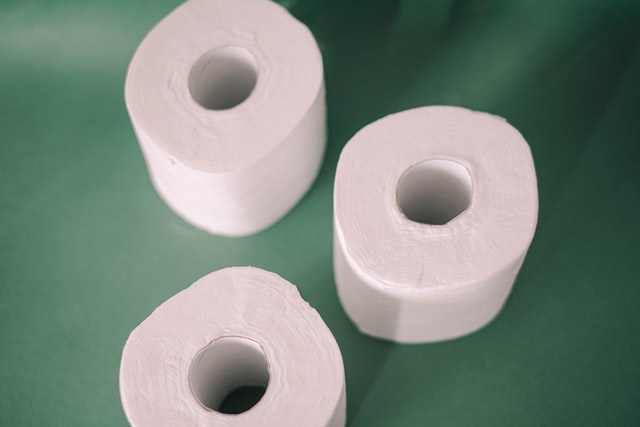 Toilet Paper Alternative Pittsburgh | Terry's Plumbing