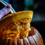 Pumpkin guts: A Plumbing Nightmare | Pittsburgh | Terry's Plumbing